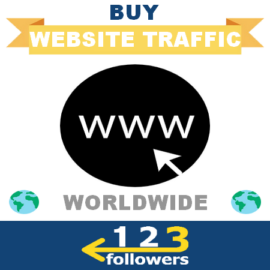 Buy Worldwide Traffic for Website