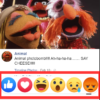 Facebook Post Reactions
